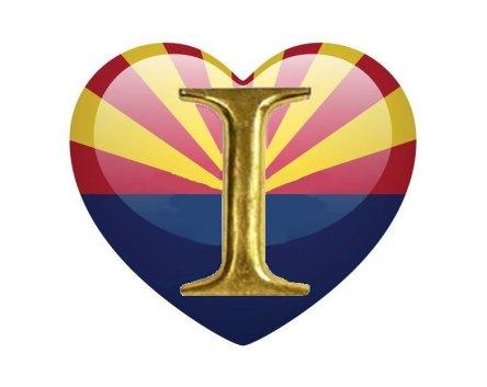 Independent Party of Arizona, Arizona Independent Party